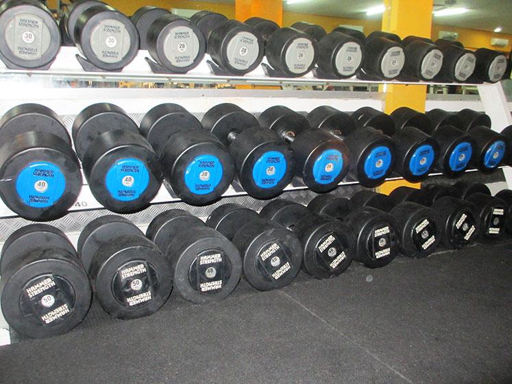 Hammer-Strength-1-50-KG-Dumb-Bells