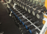 Hammer-Strength-1-50kg-Dumb-Bells